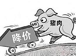 猪肉价格已开始回落 生猪出栏价累计下跌近20%