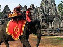 吴哥窟禁止骑大象 没有买卖就没有杀害