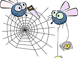 家里有大蜘蛛怎么办?家里有大蜘蛛应该怎么驱除