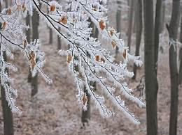 冬季去呼伦贝尔怎么玩?呼伦贝尔冬季小众景点推荐