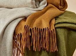 羊毛和羊绒有什么区别?羊绒价格为什么那么贵