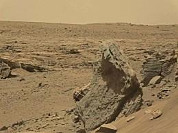 美国科学家发现火星有昆虫 迄今为止NASA尚未表态