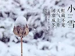 关于小雪节气的唯美古诗