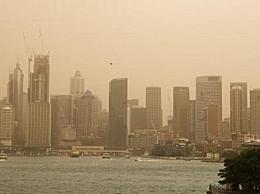 毒气笼罩悉尼 澳大利亚山火致空气污染严重
