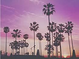 洛杉矶旅游去哪儿玩?洛杉矶必玩景点汇总