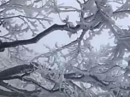 张家界天门山景区首场雾凇降临 想去赏雾凇的你行动起来吧!