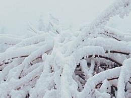 大雪后面是哪一个节气 24节气大雪下一个节气是什么