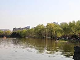 巩义惊现奇观!伊洛河汇入黄河成鸳鸯锅