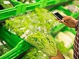 生鲜电商呆萝卜欠薪超3000万 产研团队解散
