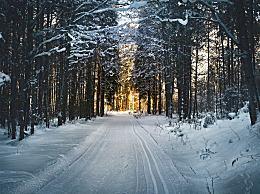 下雪天出行要注意什么?雪天路滑这些细节一定要注意