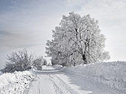 大雪节气有哪些气候特点?大雪节气的民间习俗介绍
