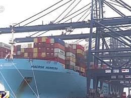 大连海关退运3700余吨洋垃圾 洋垃圾究竟是什么有何危害