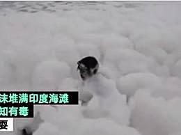 印度毒泡沫海滩在哪儿?这些泡沫是怎么形成的?
