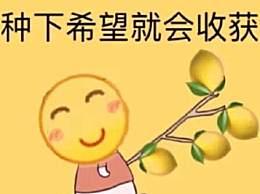 2019年十大流行语 硬核柠檬精成功当选