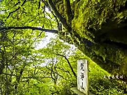 梵净山位于哪个省?梵净山旅游住宿地方一览