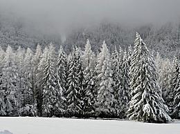 大雪和小寒哪个冷?大雪和小寒之间是什么节气
