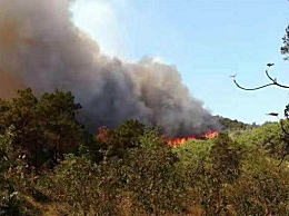 佛山山火得到控制 火势已拦截在茶地水库附近无人员伤亡