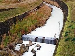 日本载17吨牛奶卡车翻车 牛奶流入了附近的藤坂川将河染成乳白色