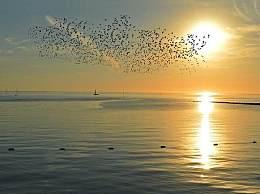 冬天去北海避寒有必要吗?北海真不愧是宜居胜地!