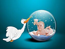 新生儿上户口在哪办理?新生儿上户口所需材料和流程