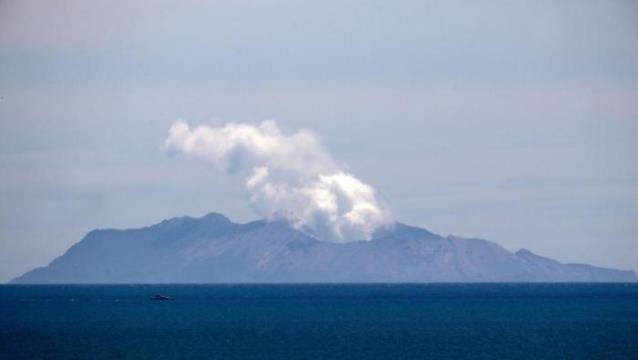 新西兰购120万平方厘米皮肤 新西兰火山爆发多人灼伤