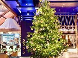 全球最贵圣诞树是怎么回事?全球最贵圣诞树到底有多贵