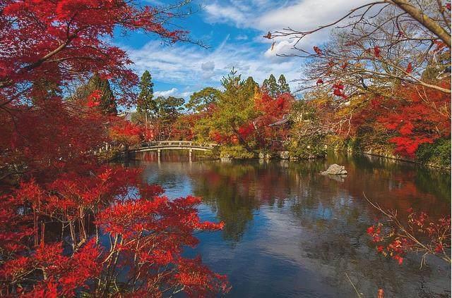 日本最值得去的地方_日本最值得旅游的城市你去过几个?