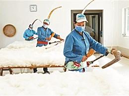 海归硕士弹棉花 让年轻人重新认识传统手艺