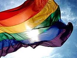 有意见建议同性婚姻合法化写入民法典 你怎么看