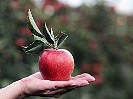 为什么平安夜要吃苹果 平安夜吃平安果的美好传说