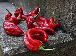 西媒称辣椒能延年益寿 降低心脏病和中风死亡风险