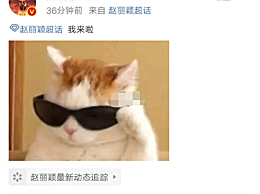"""赵丽颖坚持工作导致眼睛发炎!晒出猫咪戴墨镜图片高喊""""我来啦"""""""
