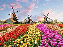 荷兰宣布正式改名 明年开始叫尼德兰