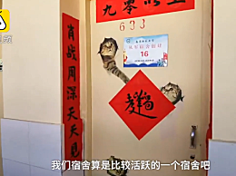 """大学宿舍追星对联走红 """"肖战周深天天见""""引网友""""共鸣"""""""