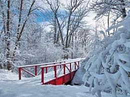2020年第一场雪说说朋友圈说说文案 描写下雪的优美句子