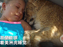 从小就在兽群长大 21岁女孩抱着美洲狮入睡