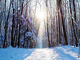 2020年是寒冬还是暖冬?今年立春之后天气还冷吗