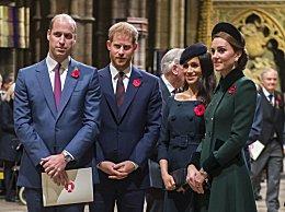 传威廉哈里兄弟决裂 威廉对哈里王子擅自卸下皇室成员表示痛心