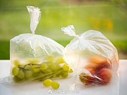 欧盟考虑全面禁止塑料包装 一次性塑料该禁用吗