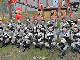 滚滚送祝福!20只熊猫宝宝集体亮相拜年
