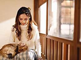 邓紫棋怀抱猫咪享受生活 邓紫棋的猫是什么品种