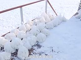 东北室外是天然冰箱 志愿者包20000饺子放操场速冻