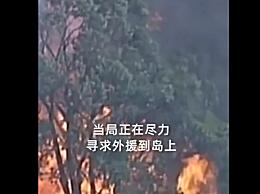 澳又一考拉栖息岛山火失控 当局敦促居民立即撤离