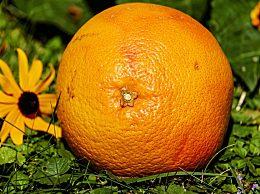 吃完柚子别扔皮 柚子皮有超多营养价值和功效