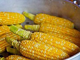黏玉米和玉米差在哪里 黏玉米的3种营养价值