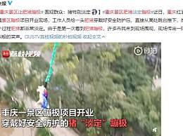 重庆景区让肥猪蹦极 猪蹦极你见过吗
