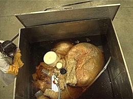 世界上最大的心脏 重达400斤