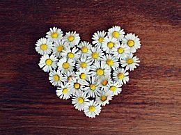 立春的诗句有哪些?描写立春的古诗诗句精选