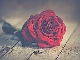 2020年情人节是几月几号星期几?情人节的起源传说介绍