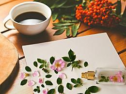 春天适合喝什么茶好?有关四类人不宜饮茶养生